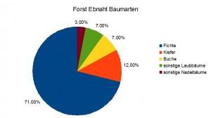 Forst Ebnath Baumarten